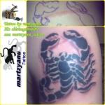 scorpion zambo