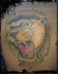 tatuaj tigru vindecat